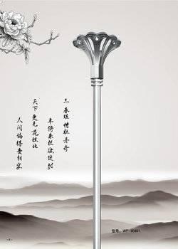 牡丹花-4